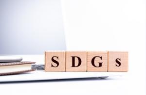 SDGsって何か知ってる?~続編~